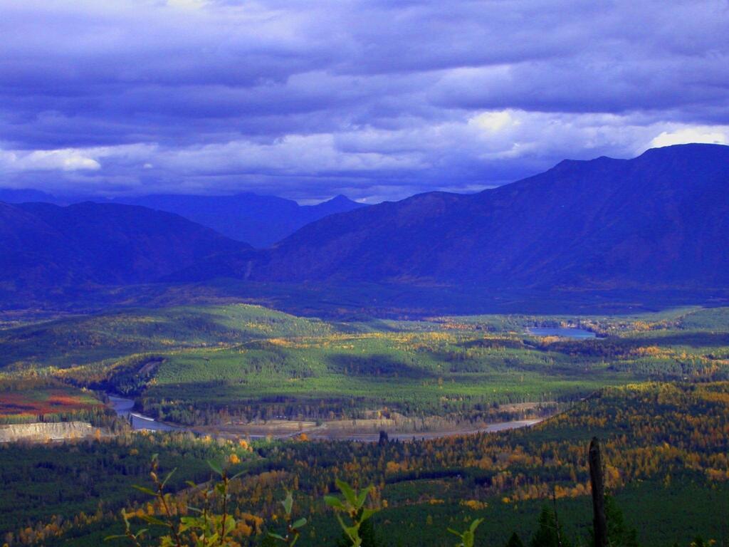 Nhn Blankenship, COLUMBIA FALLS, MT 59912