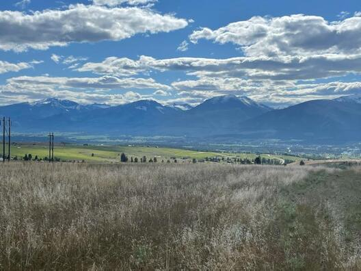 Tract 3 FLORENCE, MT 59833
