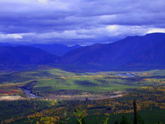 COLUMBIA FALLS, MT 59912